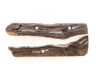 Ancient Krokodile - Adrian Laich