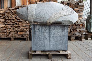 Bündner Naturband - Markus Buschor