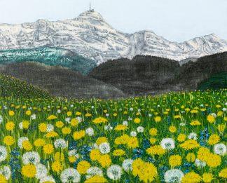 next-ART - Frühlingserwachen im AlpsteinFrühlingserwachen im Alpstein - Stephan Kühne